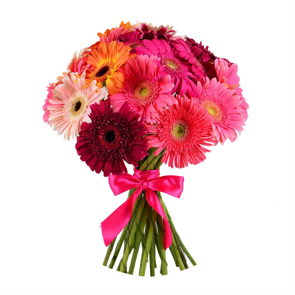 Заказ цветов мск герберы доставка цветов в пермь недорого
